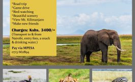 Amboseli One Day Trip